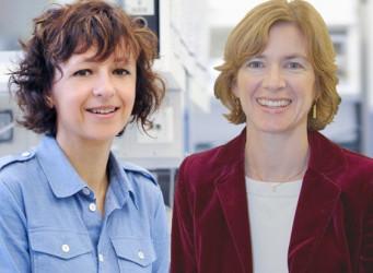 Foto de las investigadoras Charpentier y Doudna