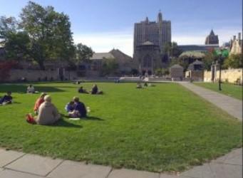 Imagen del campus de Yale, edificios con césped