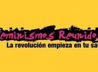 Logo del proyecto Feminismos Reunidos