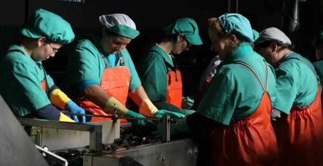 imagen de un grupo de mujeres trabajando con mejillones