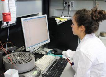 una investigadora ante un ordenador