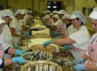 mujeres trabajando con pescado