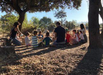 un grupo de niños y niñas con sus profesores bajo un árbol